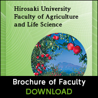 Brochure of Faculty 2018 DOWNLOAD
